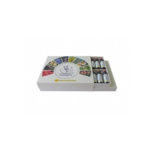 SET ESENCIAS FLORALES HEALING HERBS 10 ML (KIT 38 ESENCIAS + 2 RESCUE REMEDY)