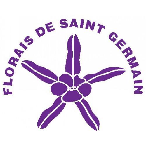 SAINT GERMAIN FOCUM 10 ML.