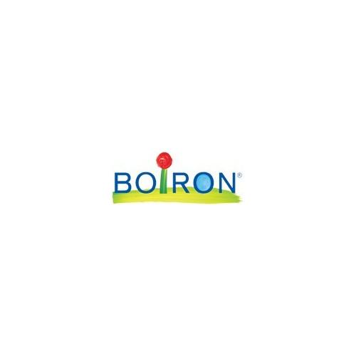 ALOE COMPOSE GRANULOS BOIRON