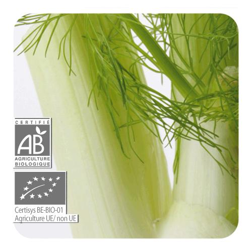 ACEITE ESENCIAL DE HINOJO BIO (FOENICULUM VULGARE) 10 CC PRANAROM