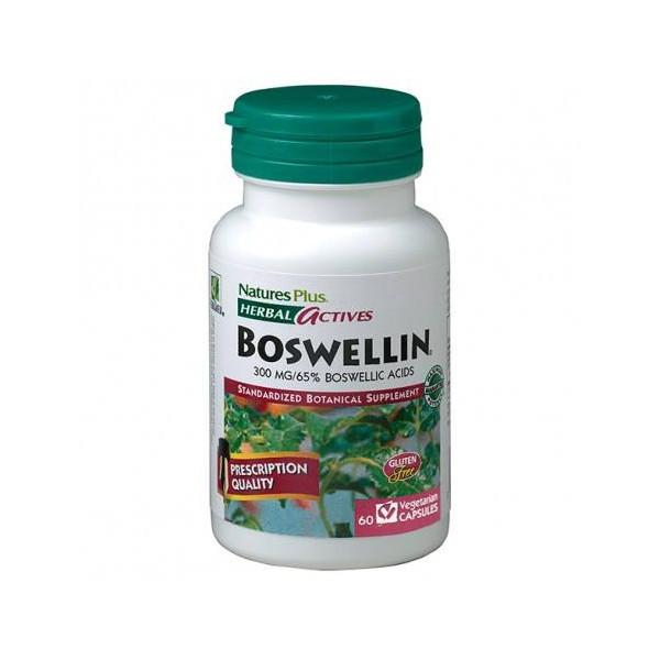BOSWELLIN BOSWELLIA 300 MG 60 CAP NATURES PLUS