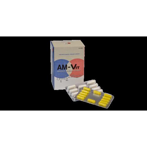AM-VIT  96 COMP + 24 CAP PRAXIS