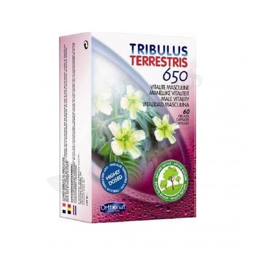 TRIBULUS TERRESTRIS 60 CAP ORTHONAT