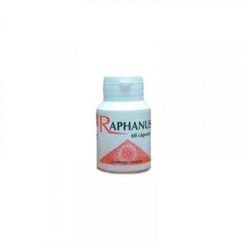 RAPHANUS 60 CAP