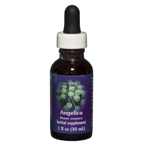 E.F. ANGELICA 30 ML