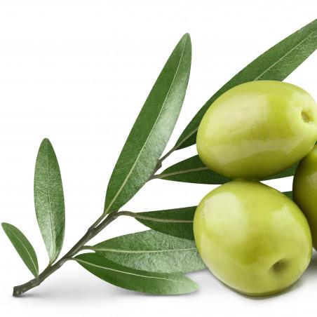 Complementos naturales con olivera
