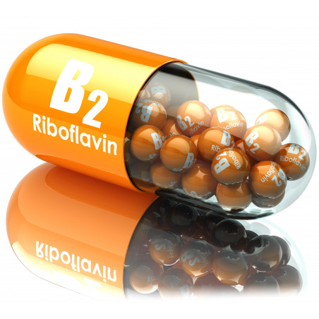 Vitamina b2 / riboflavina