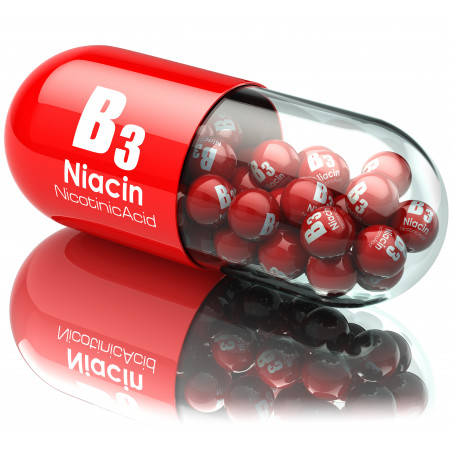 Vitamina b3 / niacina / acido nicotinico